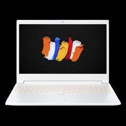 """Acer CN315-72G-742B 15,6""""/i7-10750H/16GB/1TB/GTX1650/W10Pro"""